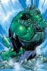 Incredible Hulk: Past Perfect - Book