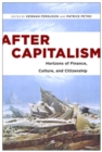 After Capitalism : Horizons of Finance, Culture, and Citizenship - eBook