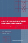A Path to Combinatorics for Undergraduates : Counting Strategies - eBook