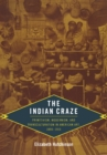 The Indian Craze : Primitivism, Modernism, and Transculturation in American Art, 1890-1915 - eBook