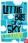 Little Bits of Sky - eBook