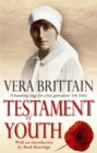 Testament of Youth : An Autobiographical Study of the Years 1900-1925 - Book