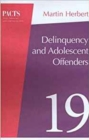 Delinquency and Young Offenders - Book