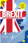 Brexit: What the Hell Happens Now? 2018 Edition - Book