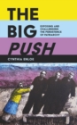 The Big Push : Exposing and Challenging the Persistence of Patriarchy - eBook