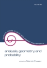 Analysis : Geometry, and Probability: Proceedings of the First Chilean Symposium of Mathematics - eBook