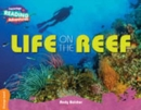 Life on the Reef Orange Band - Book