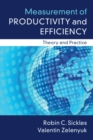 Measurement of Productivity and Efficiency : Theory and Practice - Book