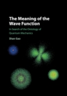 The Meaning of the Wave Function : In Search of the Ontology of Quantum Mechanics - Book
