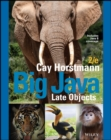 Big Java Late Objects - eBook