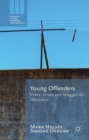 Young Offenders : Crime, Prison and Struggles for Desistance - eBook