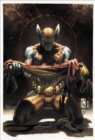 Wolverine By Daniel Way: The Complete Collection Vol. 4 - Book