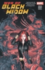 The Web Of The Black Widow - Book