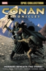 Conan Chronicles Epic Collection: Horrors Beneath the Stones - Book