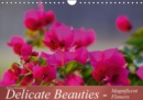 Delicate Beauties - Magnificent Flowers : A Variety of Flowers - Book