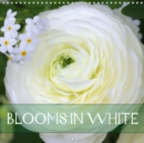Blooms in White 2019 : Charming white blossoms - Book