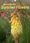 Wonderful Summer Flowers 2019 : Endless summer for 12 months - Book