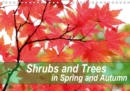 Shrubs and Trees in Spring and Autumn 2019 : Blossoms and berries of shrubs and trees. - Book