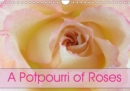 A Potpourri of Roses 2019 : Roses - an endless story - Book