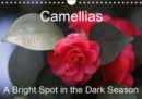 Camellias A Bright Spot in the Dark Season 2019 : Extraordinary flowers in winter - Book