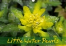 Little Water Pearls 2019 : Droplets adorn plants and blossoms - Book