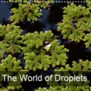 The World of Droplets 2019 : Little water jewels decorating flowers - Book