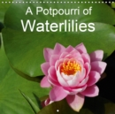 A Potpourri of Waterlilies 2019 : A colourful variety of waterlilies - Book