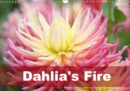 Dahlia's Fire 2019 : Amazing dahlia portraits in transparent frames - Book