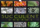 Succulent Dreams 2019 : Beautiful portraits of selected succulents - Book