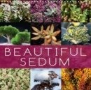 Beautiful Sedum 2019 : Portraits of beautiful Sedum varieties - Book