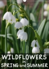 Wildflowers in Spring and Summer 2019 : Impressions from the huge variety of wildflowers - Book