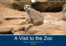 A Visit to the Zoo 2019 : A selection of animals often seen in a zoo. - Book