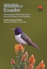 Wildlife of Ecuador : A Photographic Field Guide to Birds, Mammals, Reptiles, and Amphibians - eBook