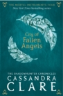The Mortal Instruments 4: City of Fallen Angels - Book