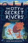 The City of Secret Rivers - Book
