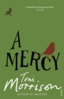 A Mercy - eBook