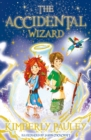 The Accidental Wizard - Book