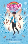 Rainbow Magic: Jae the Boy Band Fairy - Book