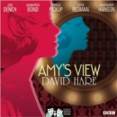 Amy's View - eAudiobook