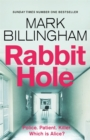 Rabbit Hole : The new masterpiece from the Sunday Times number one bestseller - Book