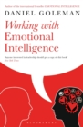 Working with Emotional Intelligence - eBook