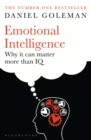 Emotional Intelligence : Why It Can Matter More Than IQ - eBook