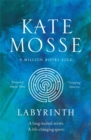 Labyrinth : The epic Richard & Judy read from the Number One bestselling author - eBook