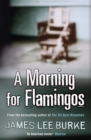 A Morning For Flamingos - eBook
