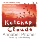 Ketchup Clouds - Book