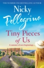 Tiny Pieces of Us - Book