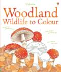 Woodland Wildlife to Colour - Book