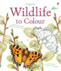 Wildlife to Colour - Book