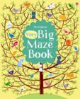 Big Book of Big Mazes - Book