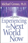Experiencing the Next World Now - eBook